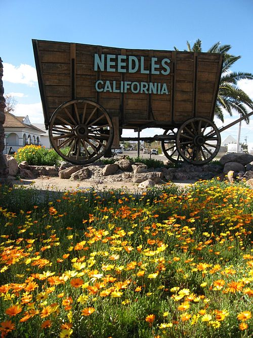 needles california0